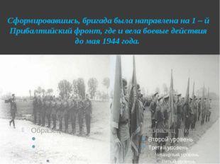 Сформировавшись, бригада была направлена на 1 – й Прибалтийский фронт, где и
