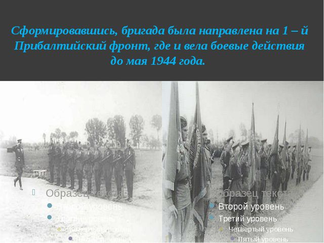 Сформировавшись, бригада была направлена на 1 – й Прибалтийский фронт, где и...
