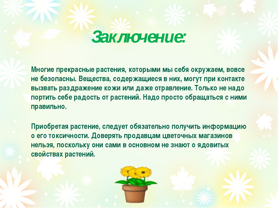 Заключение: Многие прекрасные растения, которыми мы себя окружаем, вовсе не б...