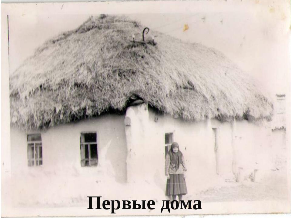 Первые дома