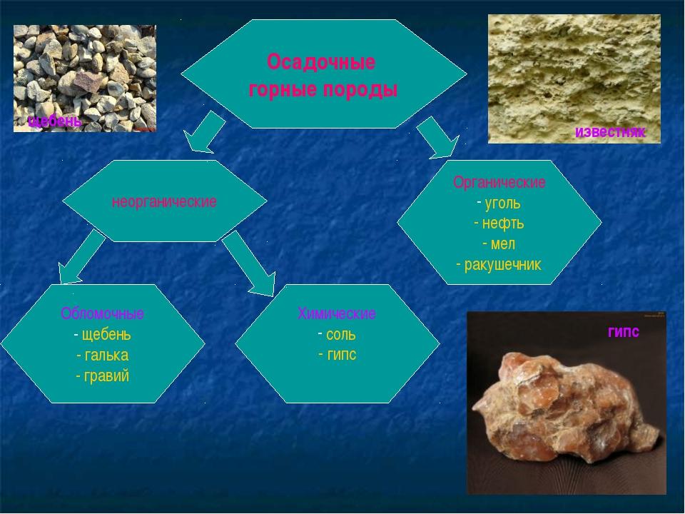 Осадочные горные породы неорганические Органические уголь нефть мел ракушечни...