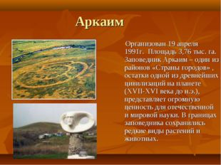Аркаим Организован 19 апреля 1991г. Площадь 3,76 тыс. га. Заповедник Аркаим –