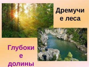 Дремучие леса Глубокие долины