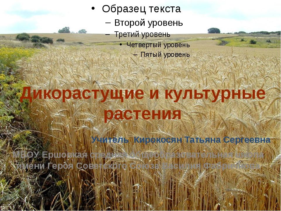 Дикорастущие и культурные растения Учитель  Кирокосян Татьяна Сергеевна МБО...