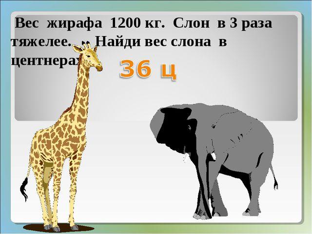Вес жирафа 1200 кг. Слон в 3 раза тяжелее. Найди вес слона в центнерах.