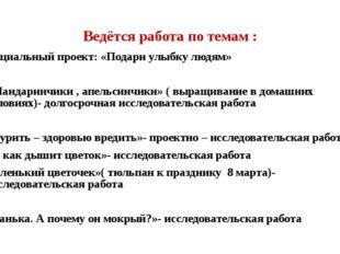 Ведётся работа по темам : Социальный проект: «Подари улыбку людям» «Мандаринч