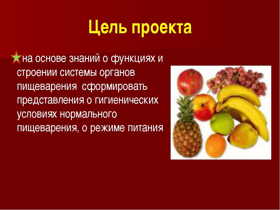 Цель проекта на основе знаний о функциях и строении системы органов пищеварен...