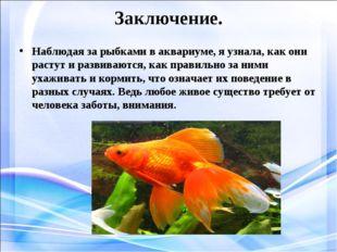 Заключение. Наблюдая за рыбками в аквариуме, я узнала, как они растут и разви
