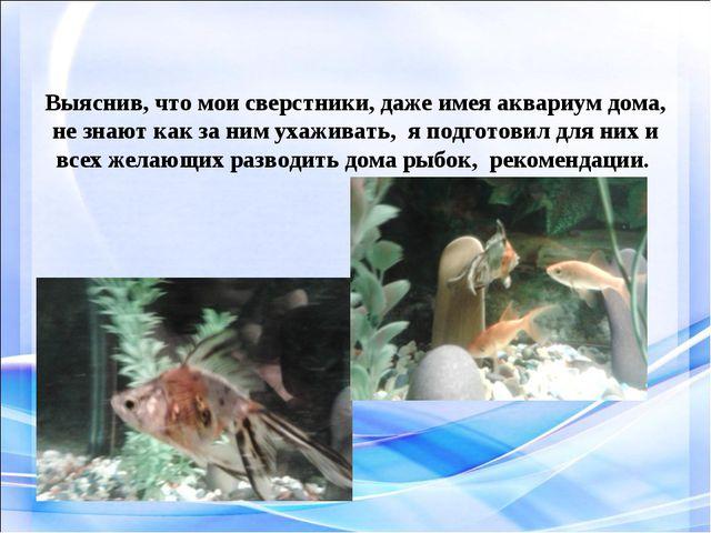 Выяснив, что мои сверстники, даже имея аквариум дома, не знают как за ним уха...