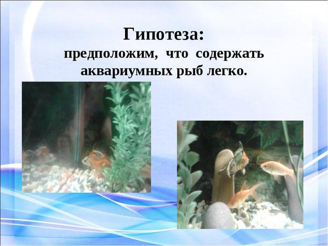 Гипотеза: предположим, что содержать аквариумных рыб легко.