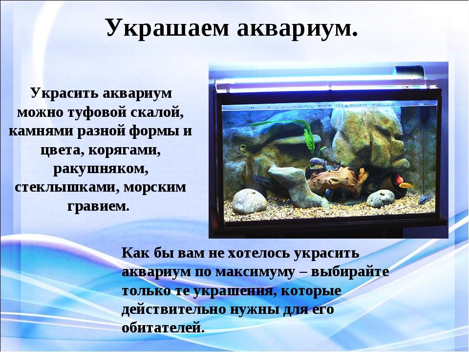 Украшаем аквариум. Украсить аквариум можно туфовой скалой, камнями разной фор...