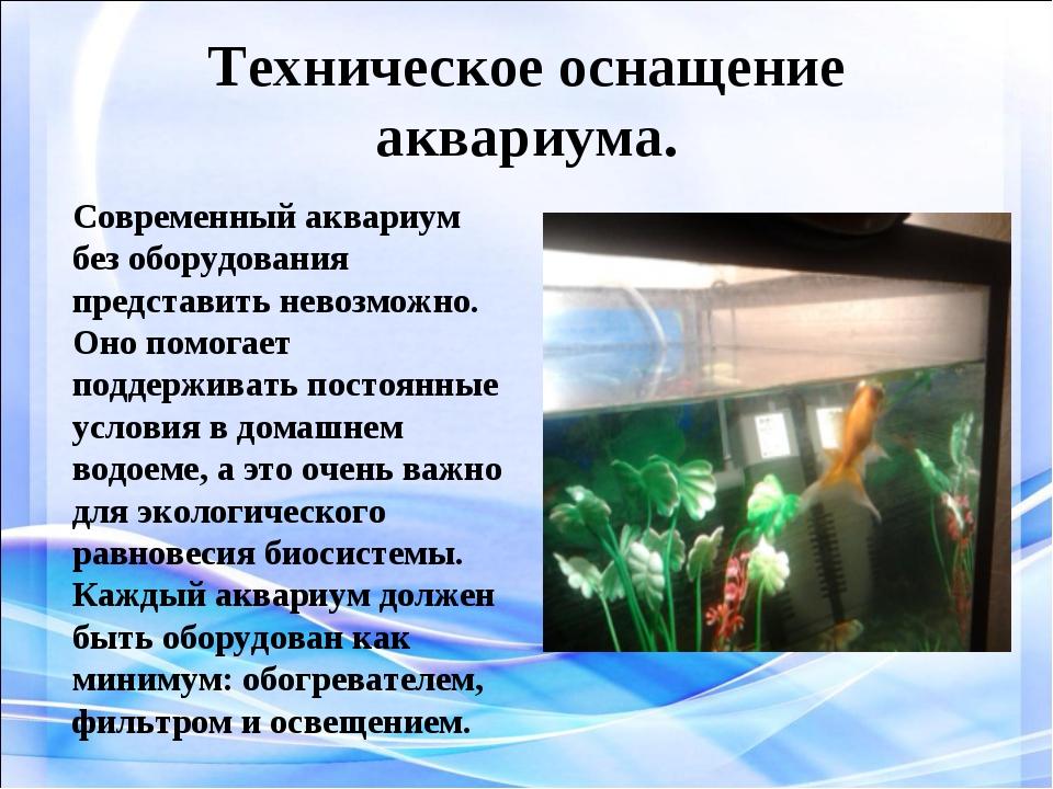Техническое оснащение аквариума. . Современный аквариум без оборудования пред...