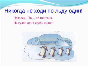 Никогда не ходи по льду один! Человек! Ты – не пингвин. Не гуляй один средь л