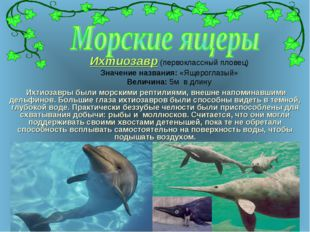 Ихтиозавр (первоклассный пловец) Значение названия: «Ящероглазый» Величина: 5