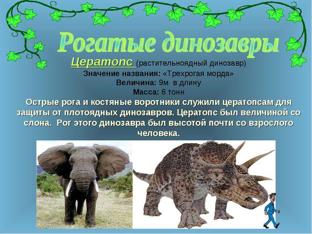Цератопс (растительноядный динозавр) Значение названия: «Трехрогая морда» Вел...