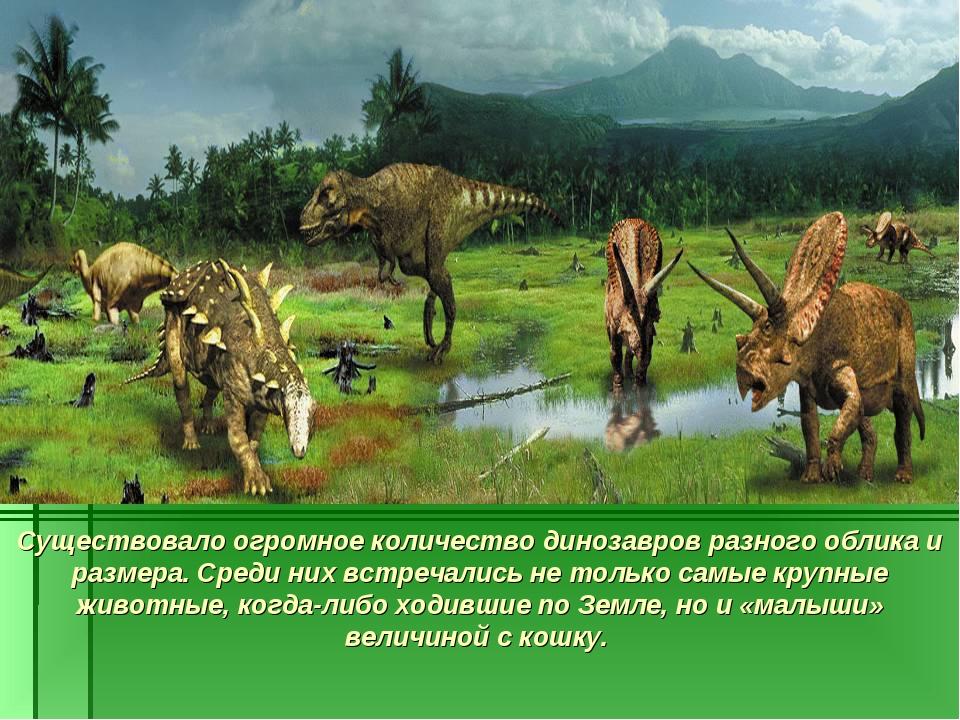 Существовало огромное количество динозавров разного облика и размера. Среди н...