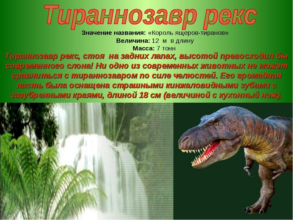 Значение названия: «Король ящеров-тиранов» Величина: 12 м в длину Масса: 7 то...