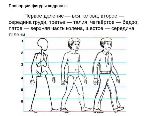 Урок по изо 4 класс авторкузин рисование с натуры фигуры человека