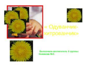 « Одуванчик-хитрованчик» Выполнила воспитатель 4 группы: Новикова М.Е. Включи