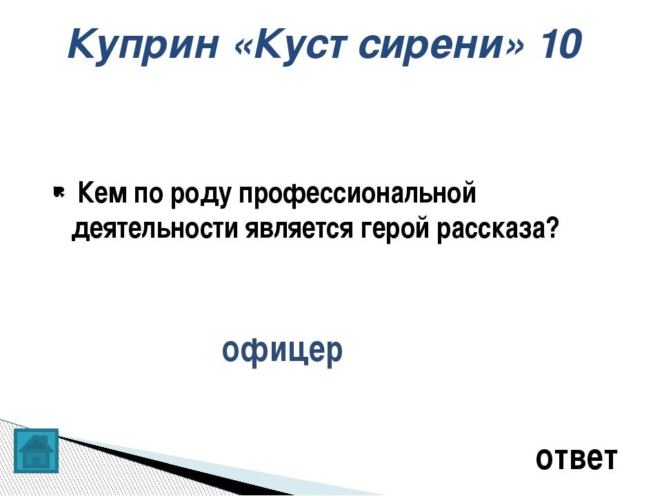 Кот в мешке. ответ Место действия 30 О ком идёт речь? Русский поэт эпохи прос...