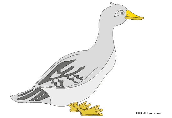C:\Documents and Settings\User\Рабочий стол\1\goose-picture-color-2.png