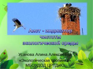 Усанова Алина Алексеевна «Экологическая тропинка» МБОУДОД ЦРТДиЮ