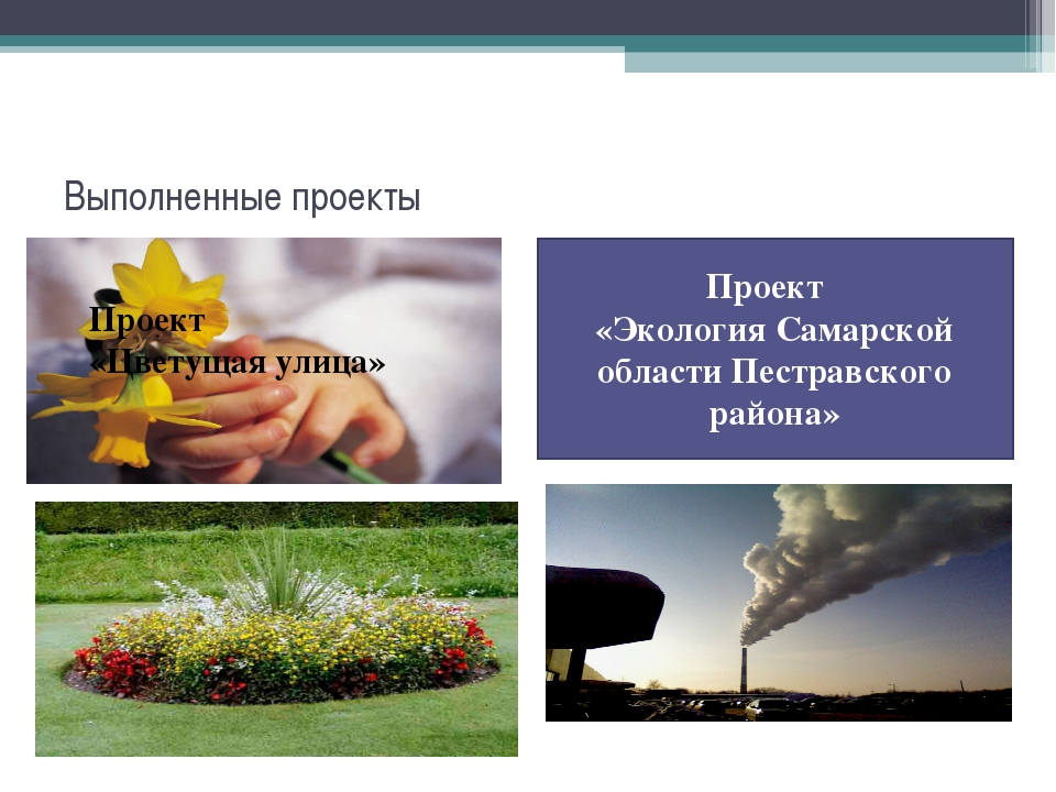 Выполненные проекты Проект «Экология Самарской области Пестравского района» П...