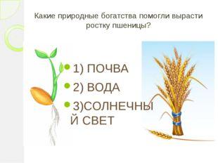 Какие природные богатства помогли вырасти ростку пшеницы? 1) ПОЧВА 2) ВОДА 3)