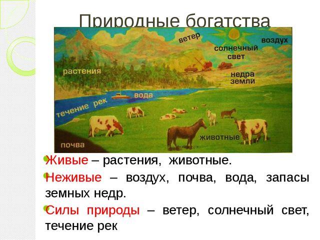 Природные богатства Живые – растения, животные. Неживые – воздух, почва, вода...