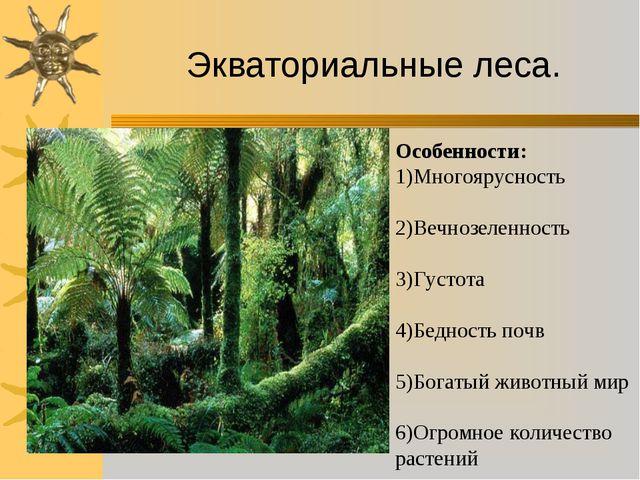 Экваториальные леса. Особенности: 1)Многоярусность 2)Вечнозеленность 3)Густот...