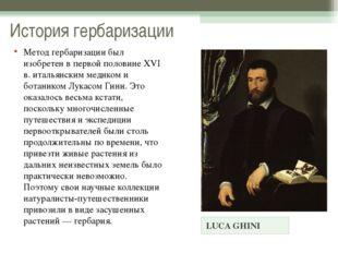 История гербаризации LUCA GHINI Метод гербаризации был изобретен в первой пол