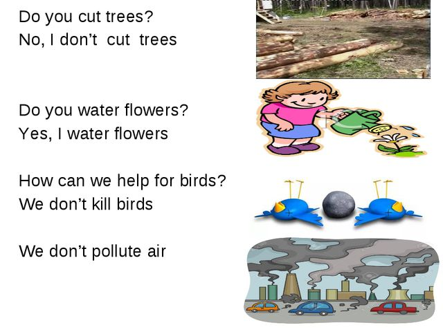 Do you cut trees? No, I don't cut trees Do you water flowers? Yes, I water fl...