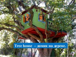 Tree house – домик на дереве.