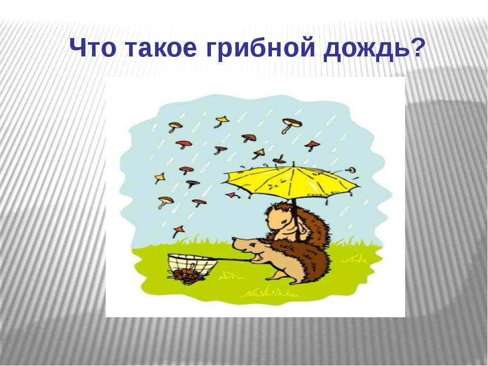 Что такое грибной дождь?