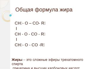 Общая формула жира СН₂- О – СO- R₁ l CH - O - CO - R₂ I CH₂- O - CO -R₃ Жиры