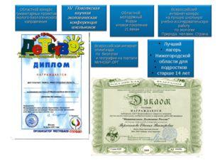 Лучший лагерь Нижегородской области для подростков старше 14 лет Областной ко