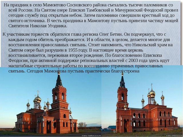 На праздник в село Мамонтово Сосновского района съехались тысячи паломников...