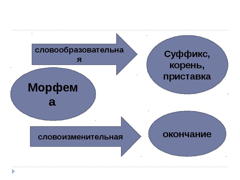 Морфема словообразовательная словоизменительная Суффикс, корень, приставка о...