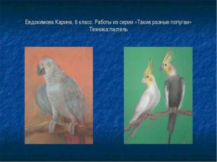 Евдокимова Карина, 6 класс. Работы из серии «Такие разные попугаи» Техника:па