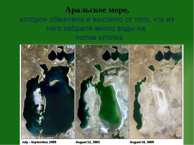 Аральское море, которое обмелело и высохло от того, что из него забрали много...