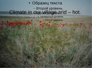 Climate in our village arid – hot.