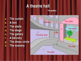 A theatre hall The curtain A box The stalls The stage The gallery A balcony T