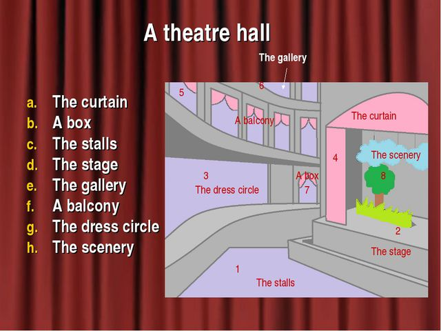 A theatre hall The curtain A box The stalls The stage The gallery A balcony T...