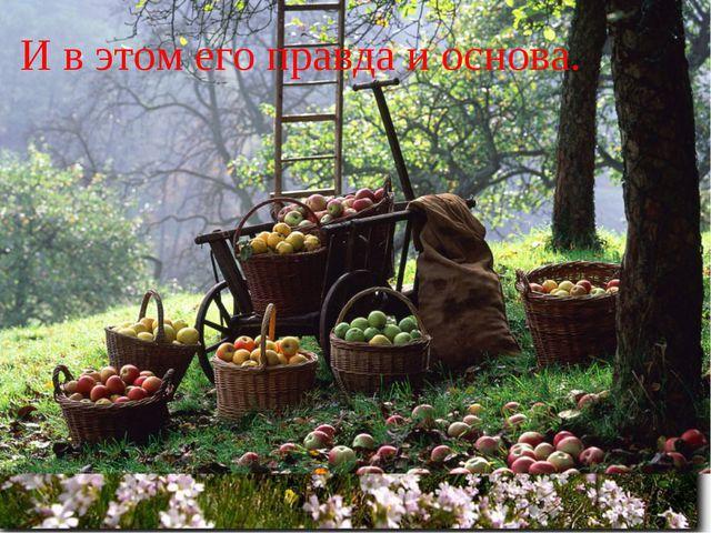 Живет адыгейский народ. Растит детей, сады сажает снова. И в этом его правда...