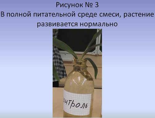 http://festival.1september.ru/articles/589917/3.JPG