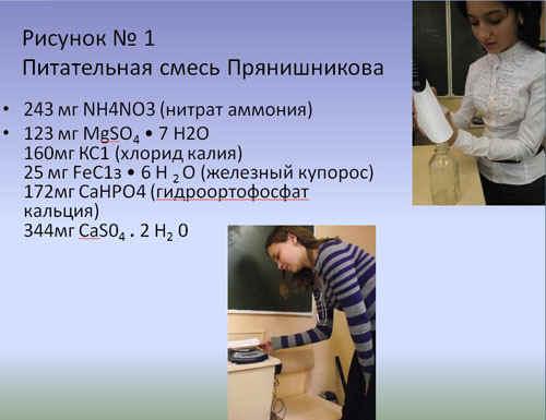 http://festival.1september.ru/articles/589917/1.JPG