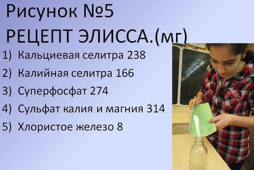 http://festival.1september.ru/articles/589917/5.JPG
