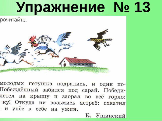Упражнение № 13