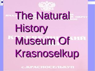 The Natural History Museum Of Krasnoselkup