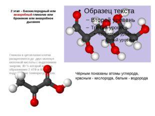 2 этап – Бескислородный или анаэробный гликолиз или брожение или анаэробное д